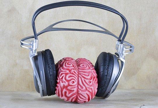 Le cortex moteur aide à mieux entendre